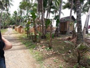 The coast road heading into the village